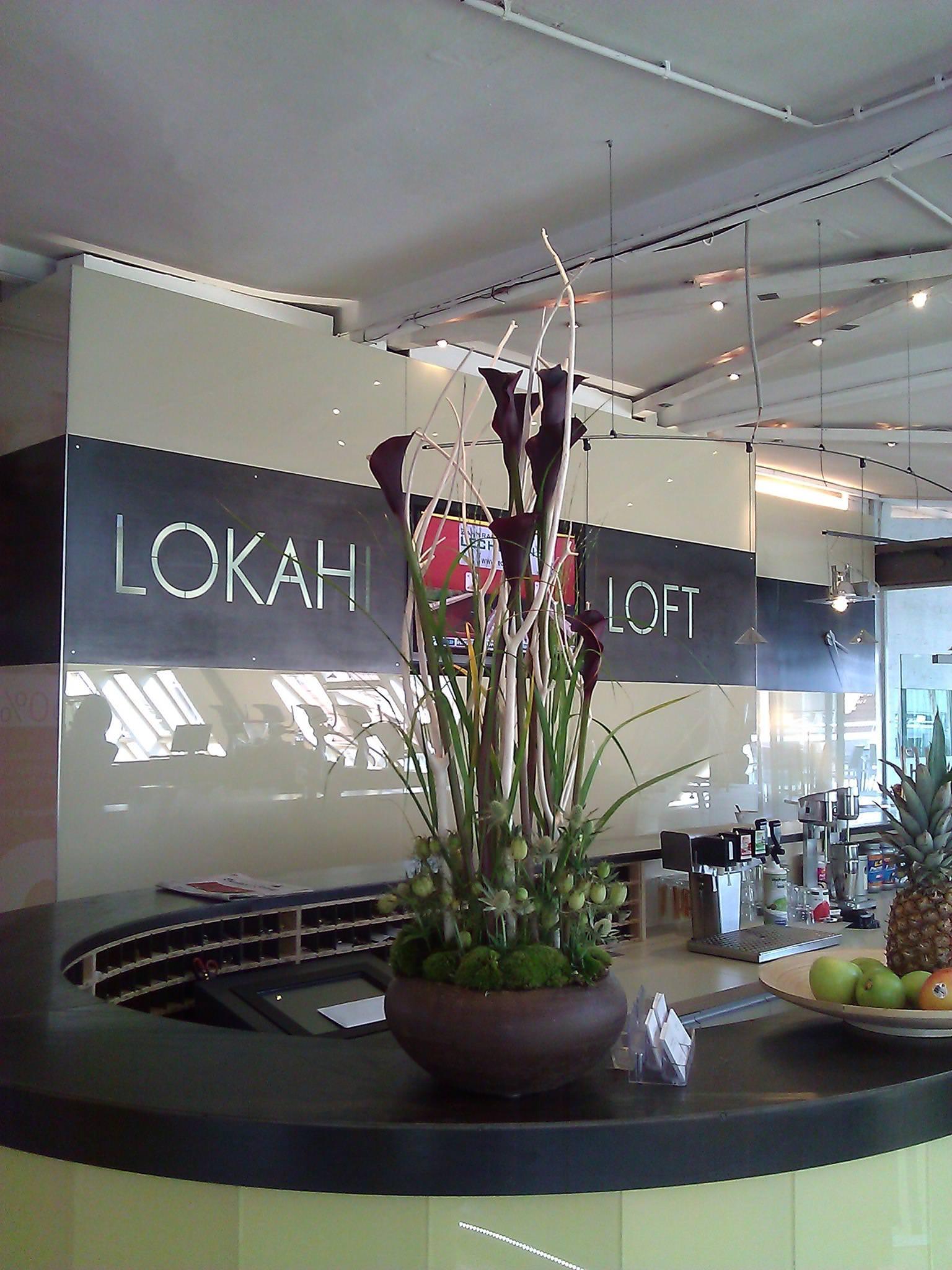 lokahi loft ist body life club des jahres 2008 sports insider magazin. Black Bedroom Furniture Sets. Home Design Ideas