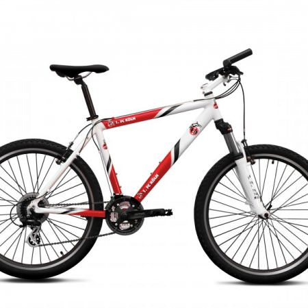 fussball-fan-bike-fahrrad-fc-koeln