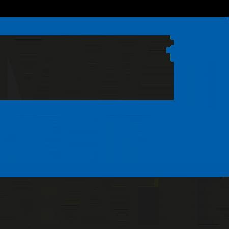 bmw-berlin-marathon-logo