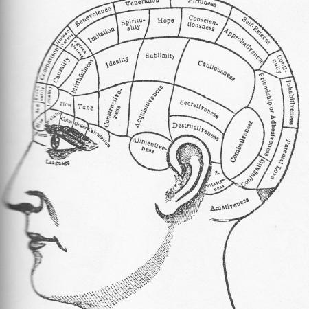 gehirn-brain-gehirntraining-gehirnjogging
