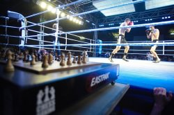 cc by wikimedia/ World Chess Boxing Organisation