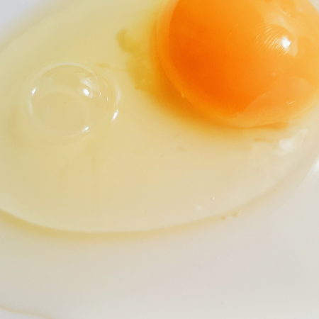 rohes-ei-eier-raw-eggs