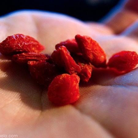 goji-beeren-berries-berry