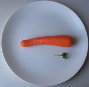 Renter Diät