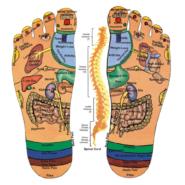 Entspannung pur durch Fußreflexzonen-Massage